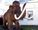 Mamutes