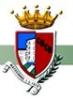FC Biquinha