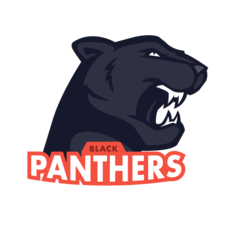 Black Panthers F.C.
